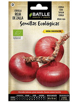 Semillas de Cebolla Roja De...