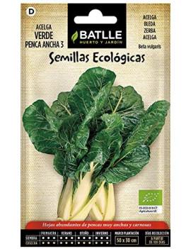 Semillas de Acelga verde de...