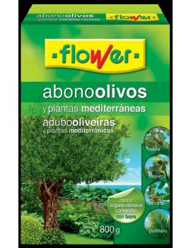Adob Olivera i plantes...