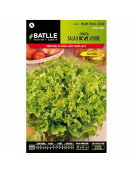 Semillas de Lechuga Salad...
