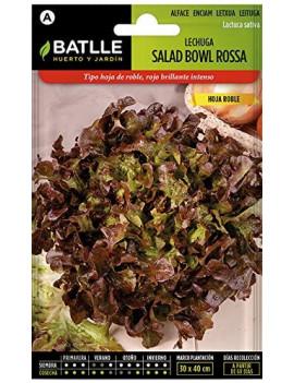 Llavors d'Enciam Salad Bowl...