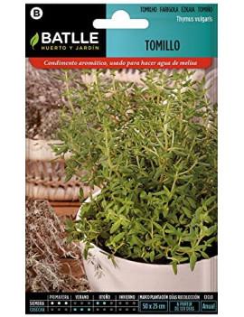 Semillas de Tomillo