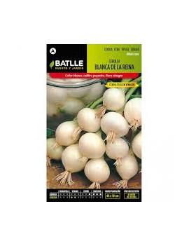 Semillas de Cebolla Blanca...