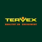 Tervex